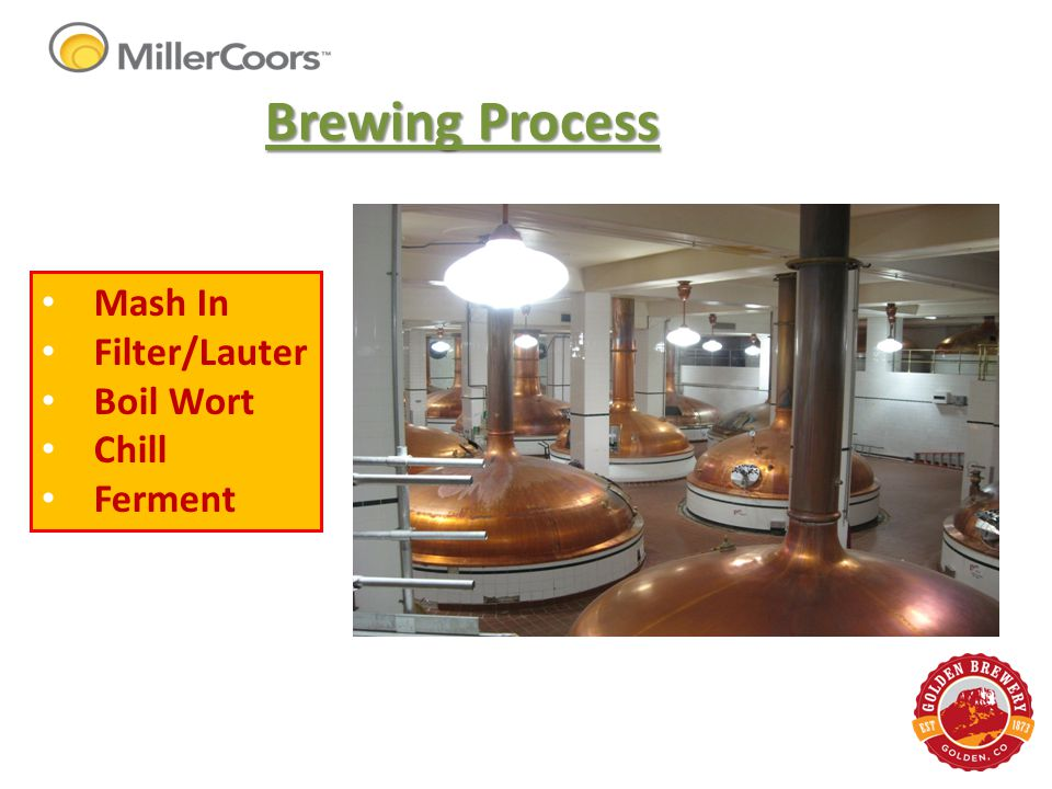 Brewing Process Mash In Filter/Lauter Boil Wort Chill Ferment