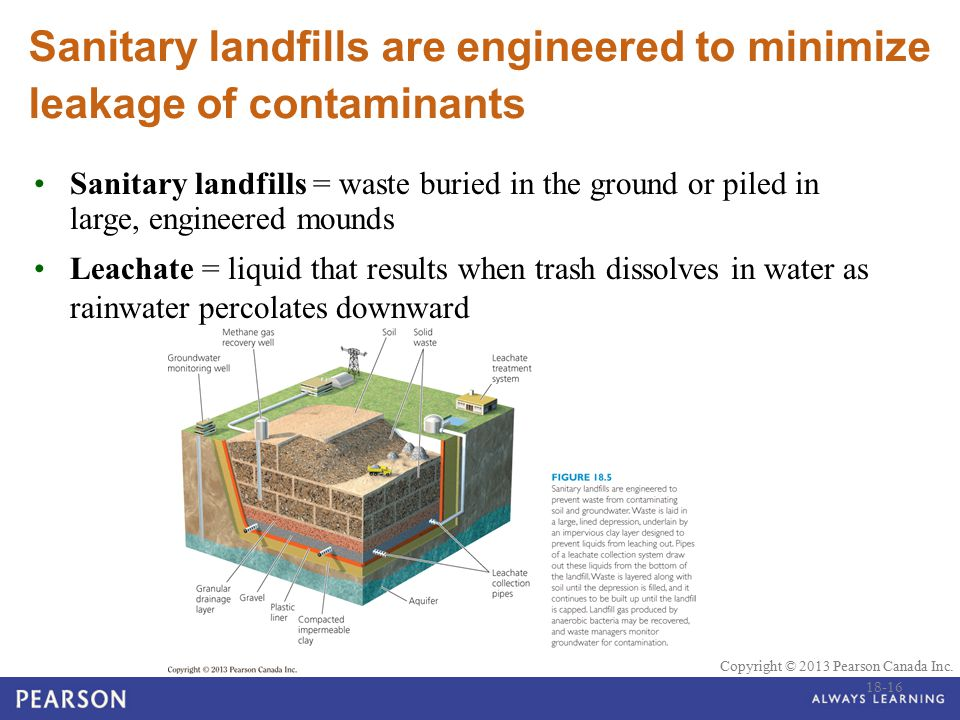 Sanitary landfills are engineered to minimize leakage of contaminants