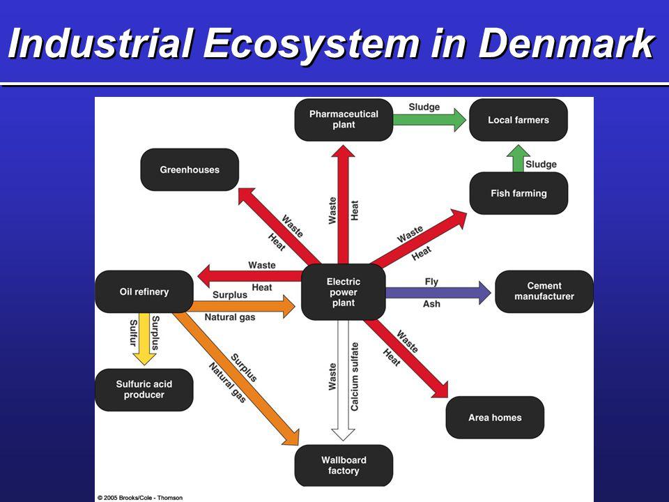Industrial Ecosystem in Denmark