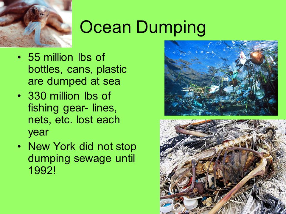 Ocean Dumping 55 million lbs of bottles, cans, plastic are dumped at sea. 330 million lbs of fishing gear- lines, nets, etc. lost each year.