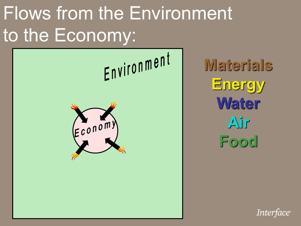 Flows from the Environment to the Economy: