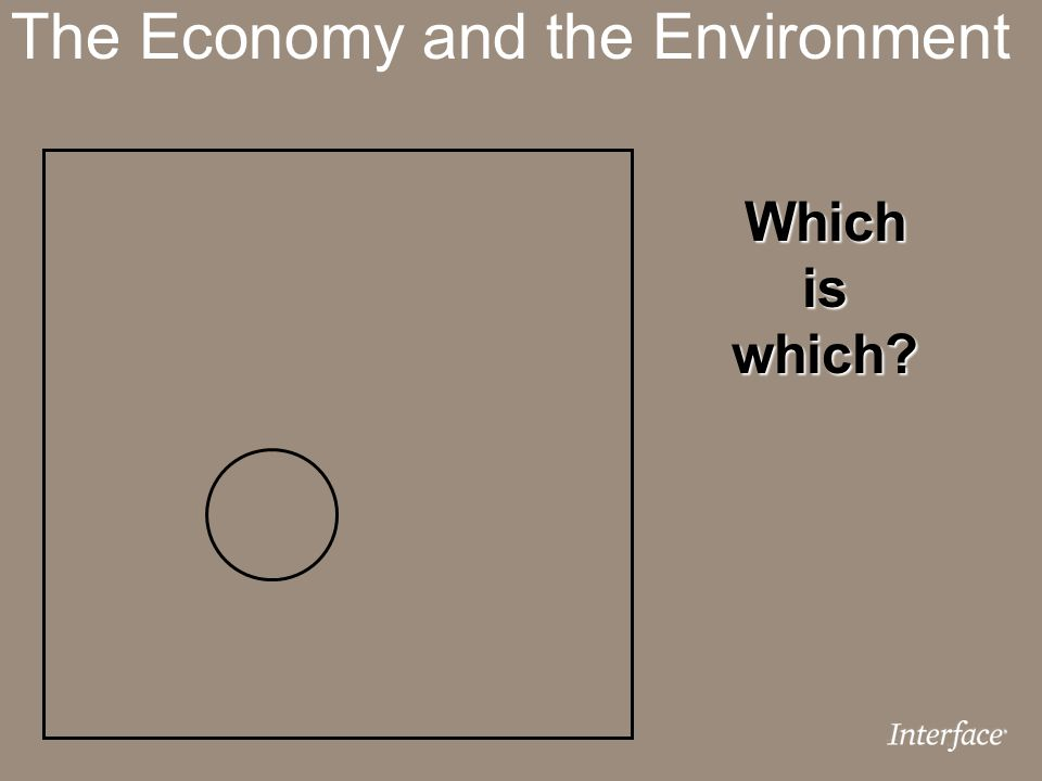 The Economy and the Environment