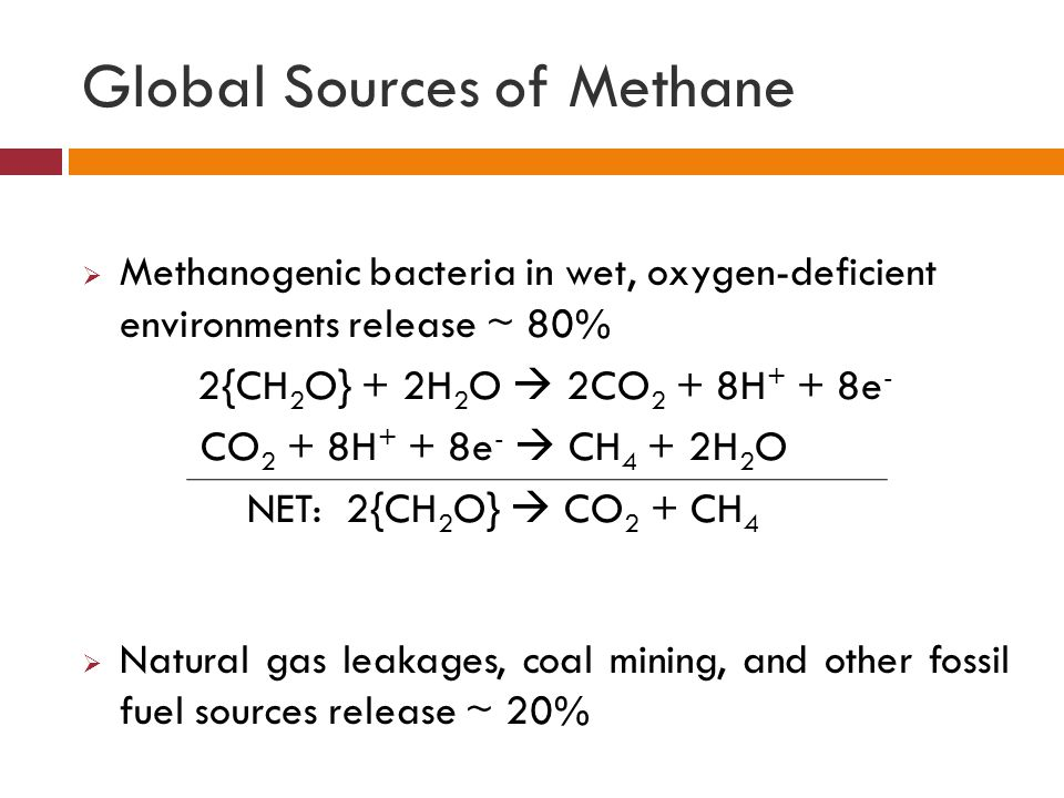 Global Sources of Methane