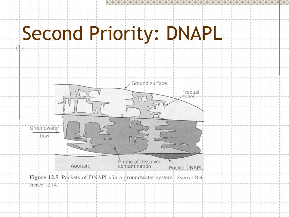 Second Priority: DNAPL