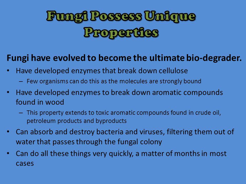 Fungi Possess Unique Properties