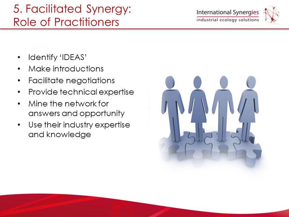 5. Facilitated Synergy: Role of Practitioners