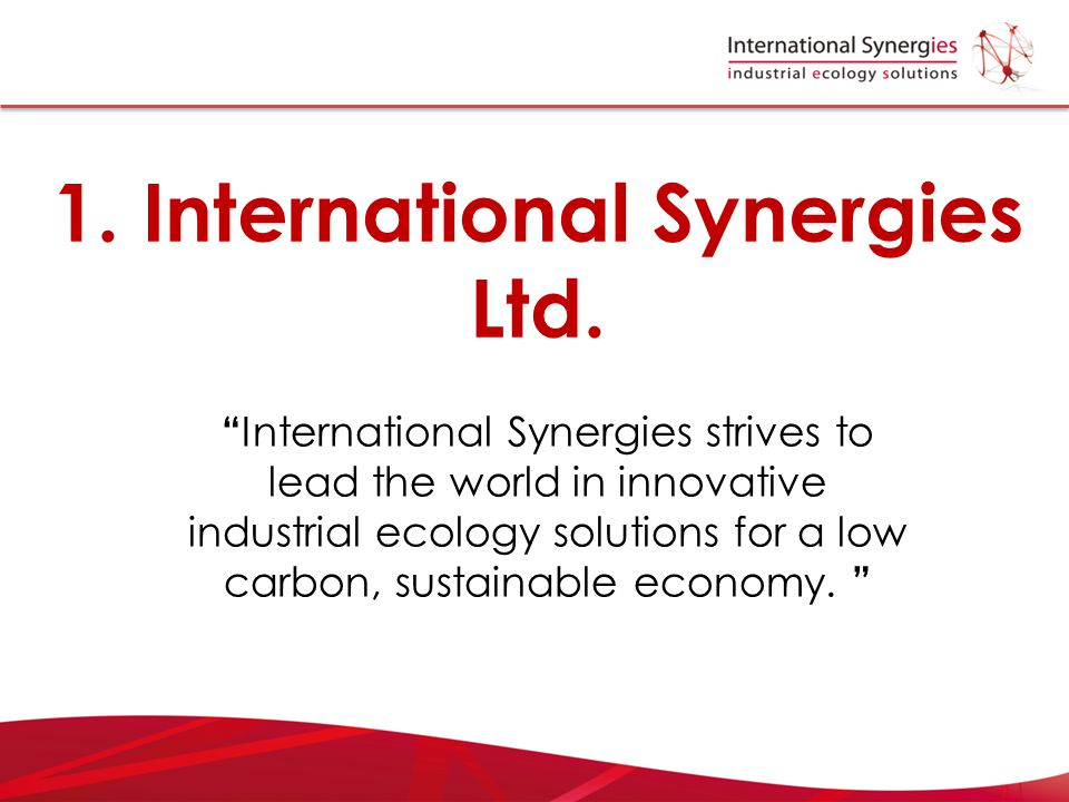 1. International Synergies Ltd.