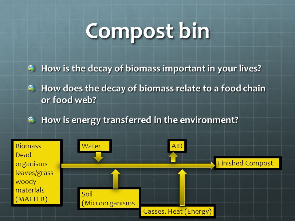 Compost bin How is the decay of biomass important in your lives