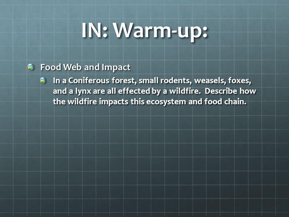 IN: Warm-up: Food Web and Impact