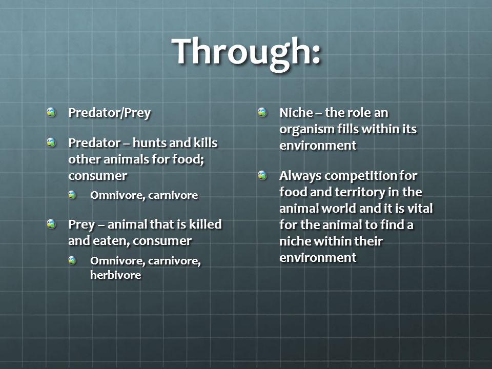 Through: Predator/Prey