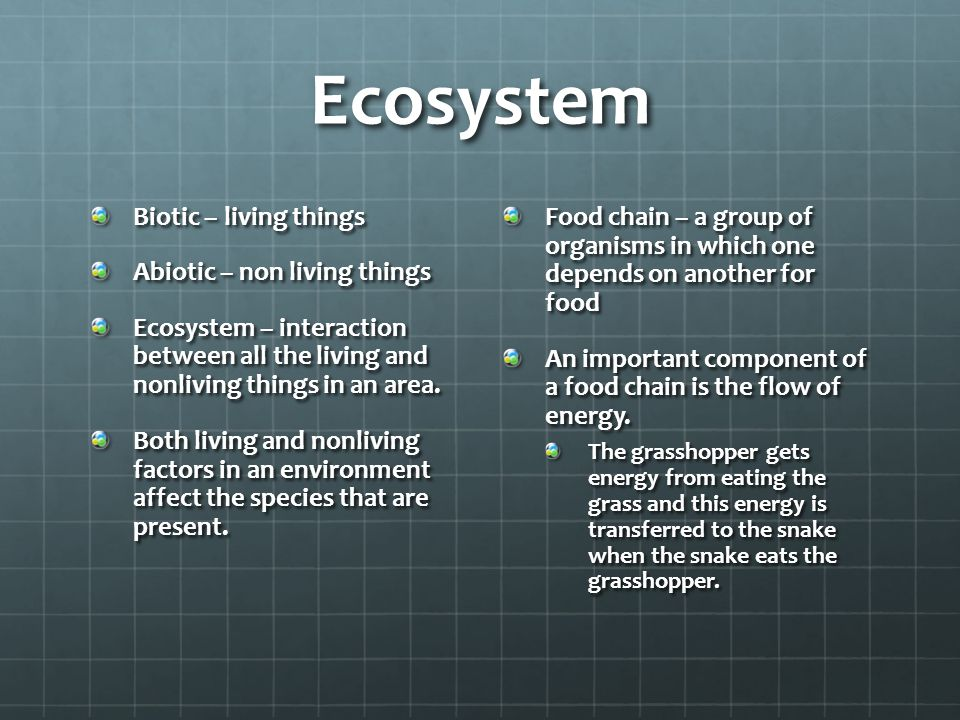 Ecosystem Biotic – living things Abiotic – non living things