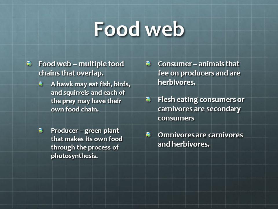 Food web Food web – multiple food chains that overlap.