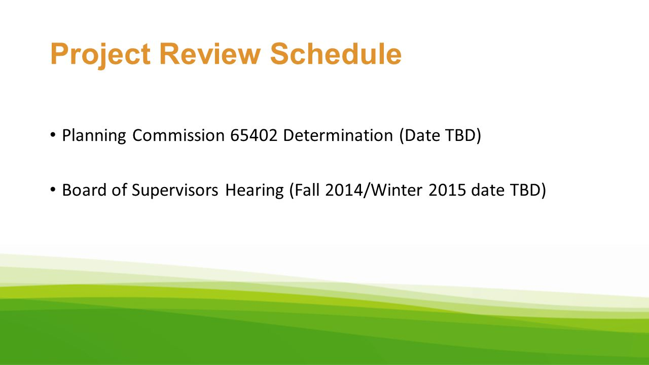 Project Review Schedule