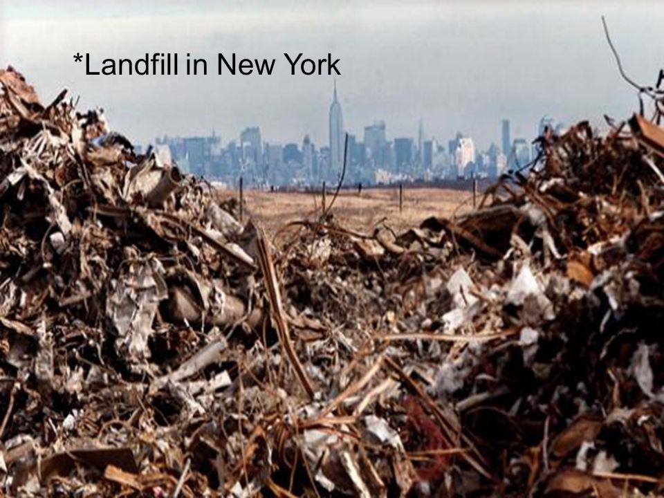 *Landfill in New York