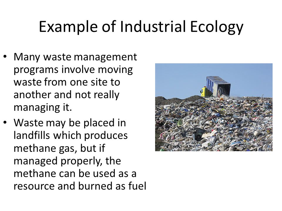Example of Industrial Ecology