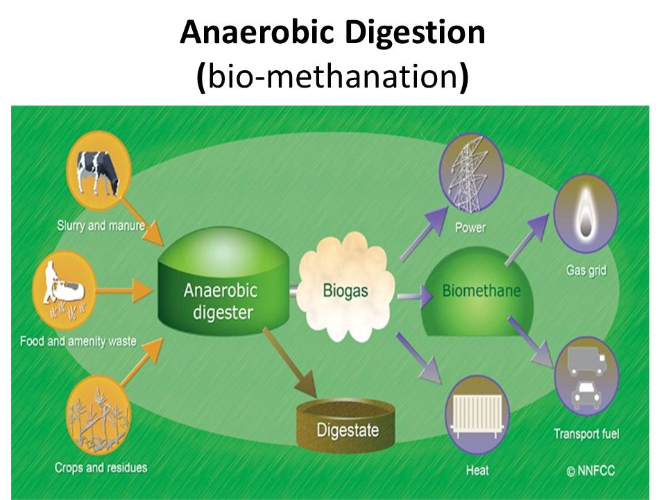 Anaerobic Digestion (bio-methanation)