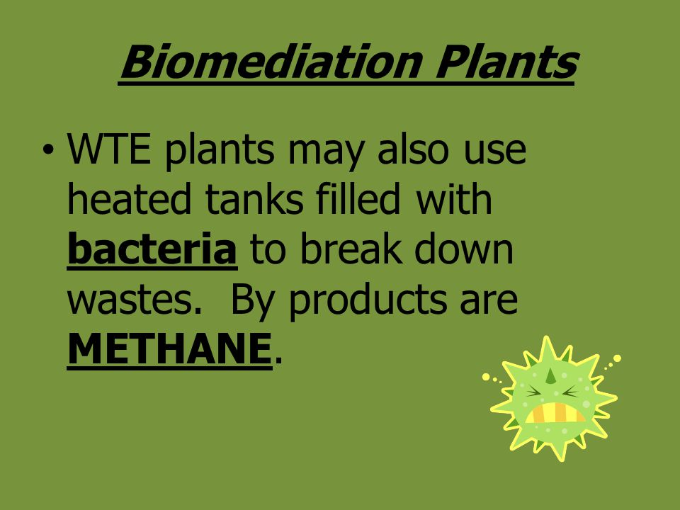 Biomediation Plants WTE plants may also use heated tanks filled with bacteria to break down wastes.