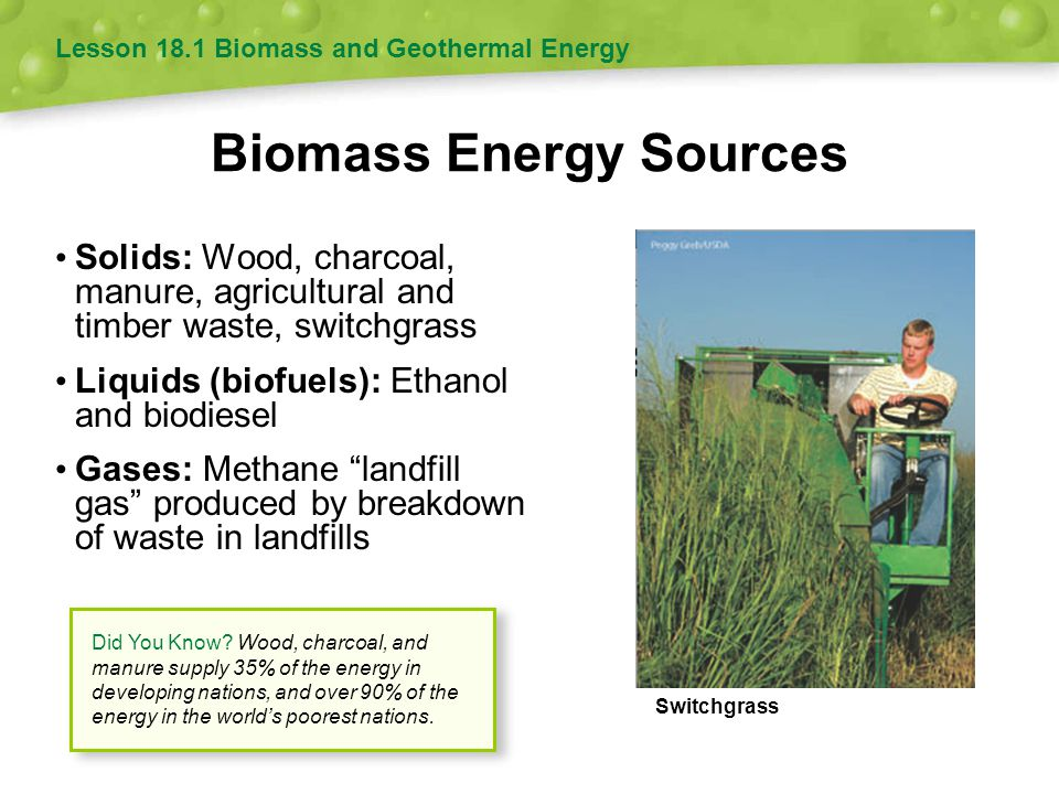 Biomass Energy Sources