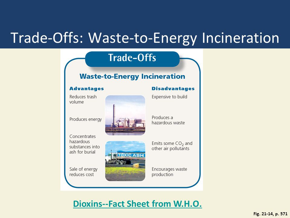 Trade-Offs: Waste-to-Energy Incineration