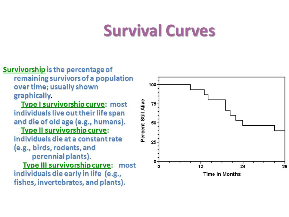 Survival Curves