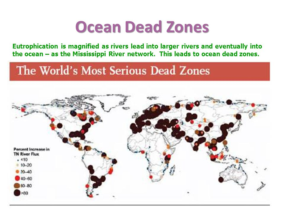Ocean Dead Zones