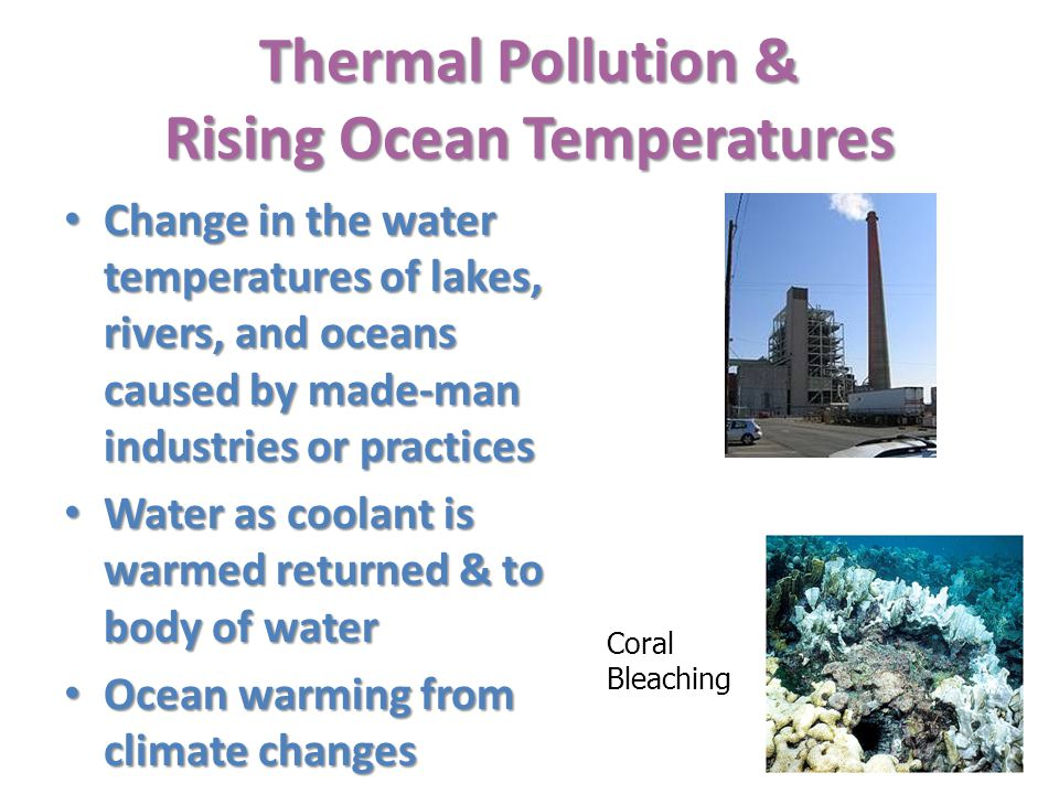 Thermal Pollution & Rising Ocean Temperatures