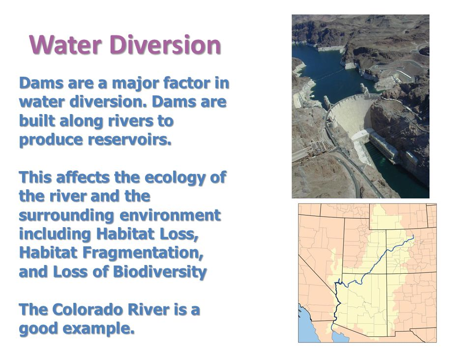 Water Diversion Dams are a major factor in