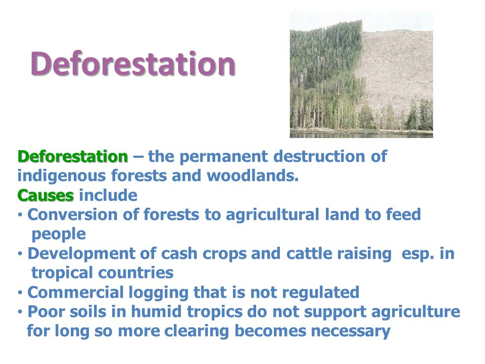 Deforestation Deforestation – the permanent destruction of indigenous forests and woodlands. Causes include.