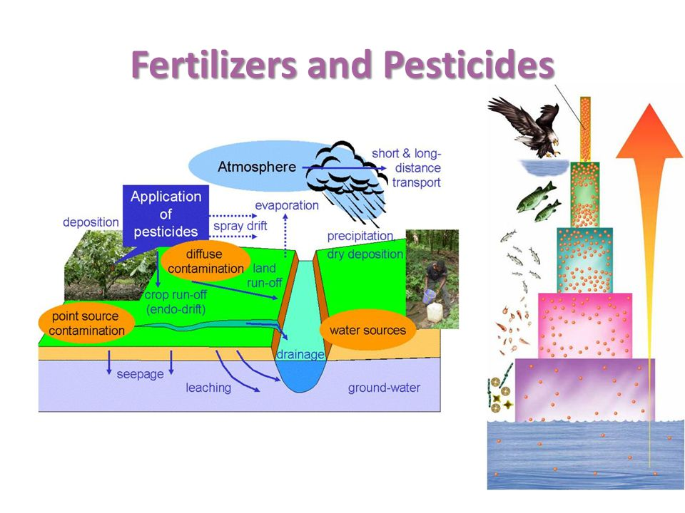 Fertilizers and Pesticides