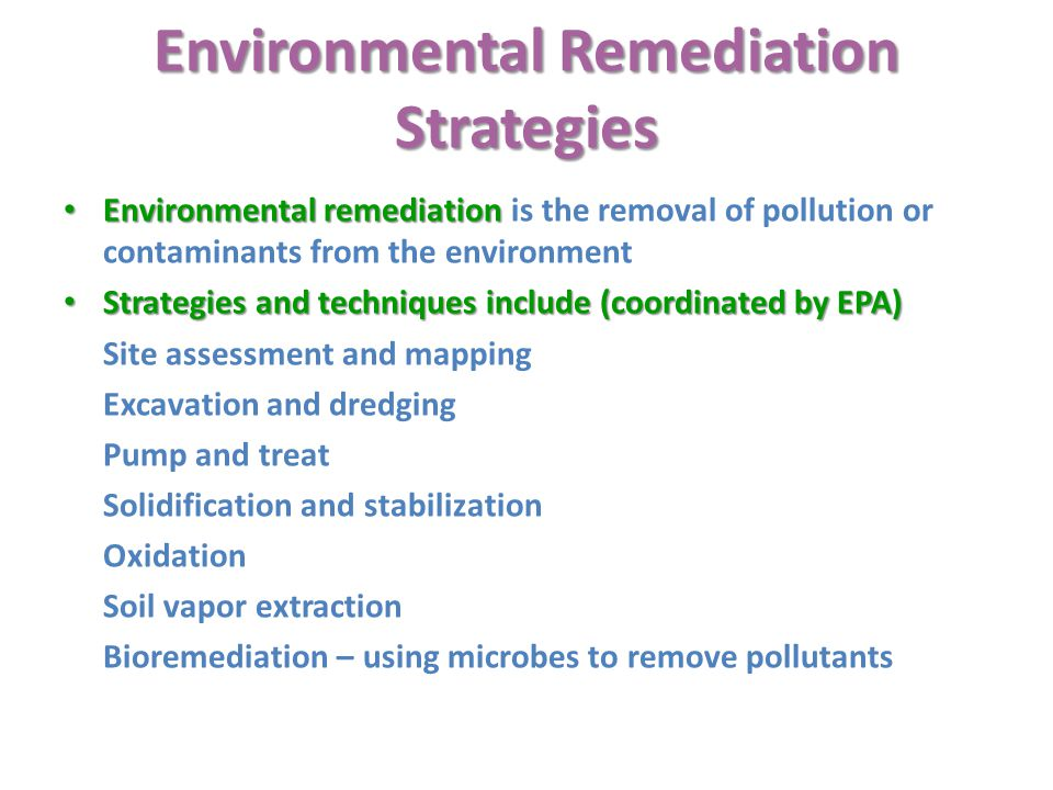 Environmental Remediation Strategies