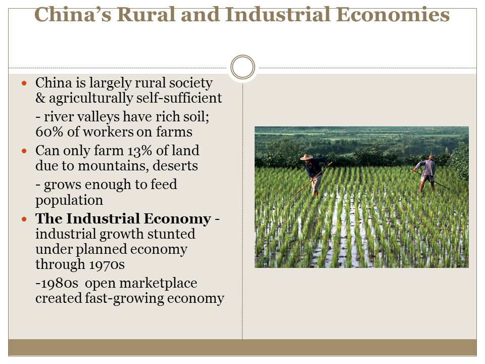 China's Rural and Industrial Economies