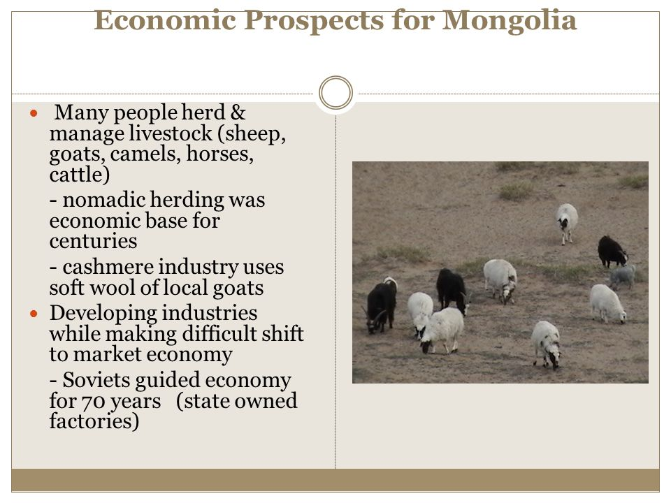 Economic Prospects for Mongolia