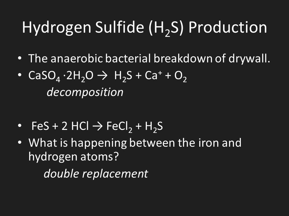 Hydrogen Sulfide (H2S) Production