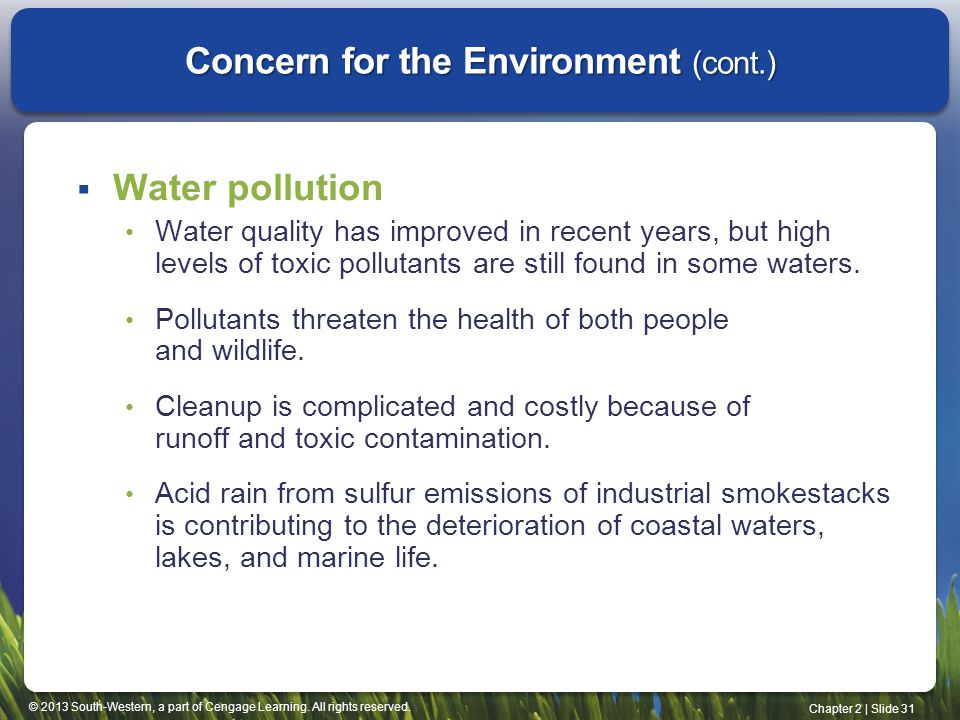 Concern for the Environment (cont.)