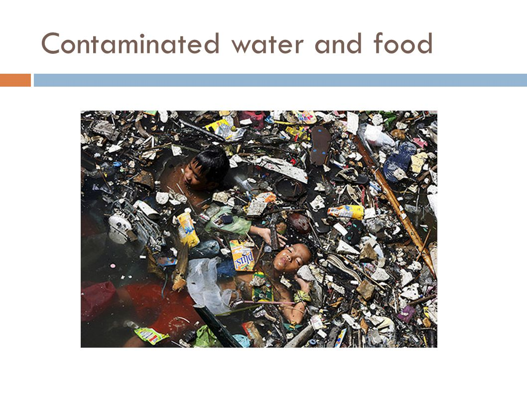 Contaminated water and food