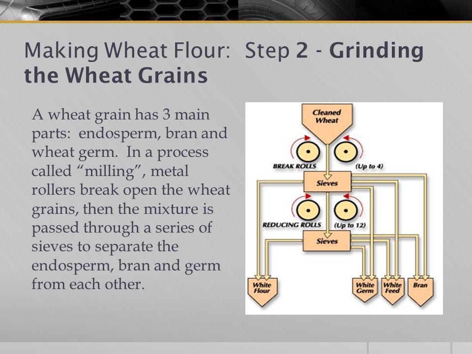 Making Wheat Flour: Step 2 - Grinding the Wheat Grains