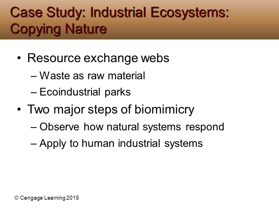 Case Study: Industrial Ecosystems: Copying Nature