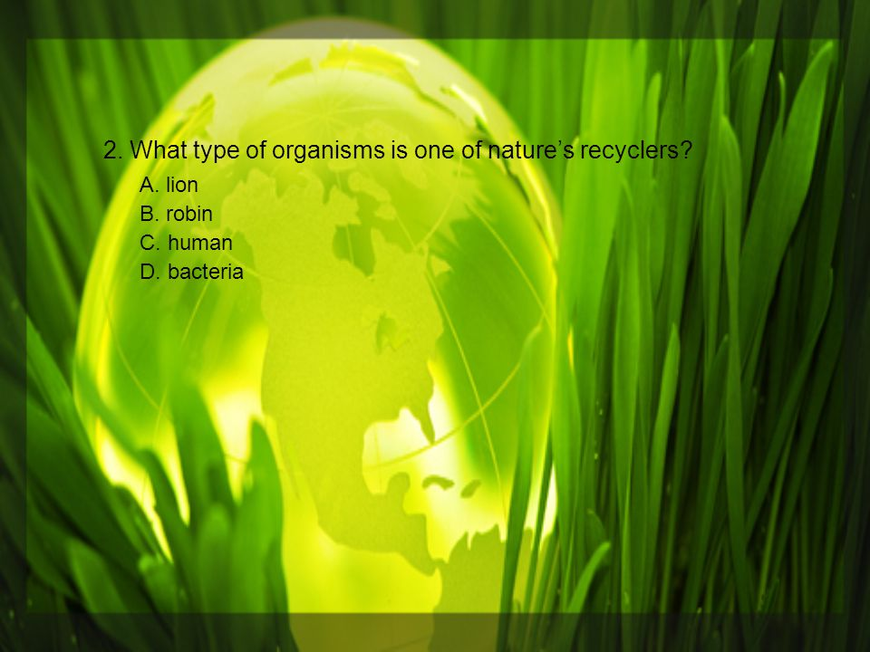2. What type of organisms is one of nature's recyclers