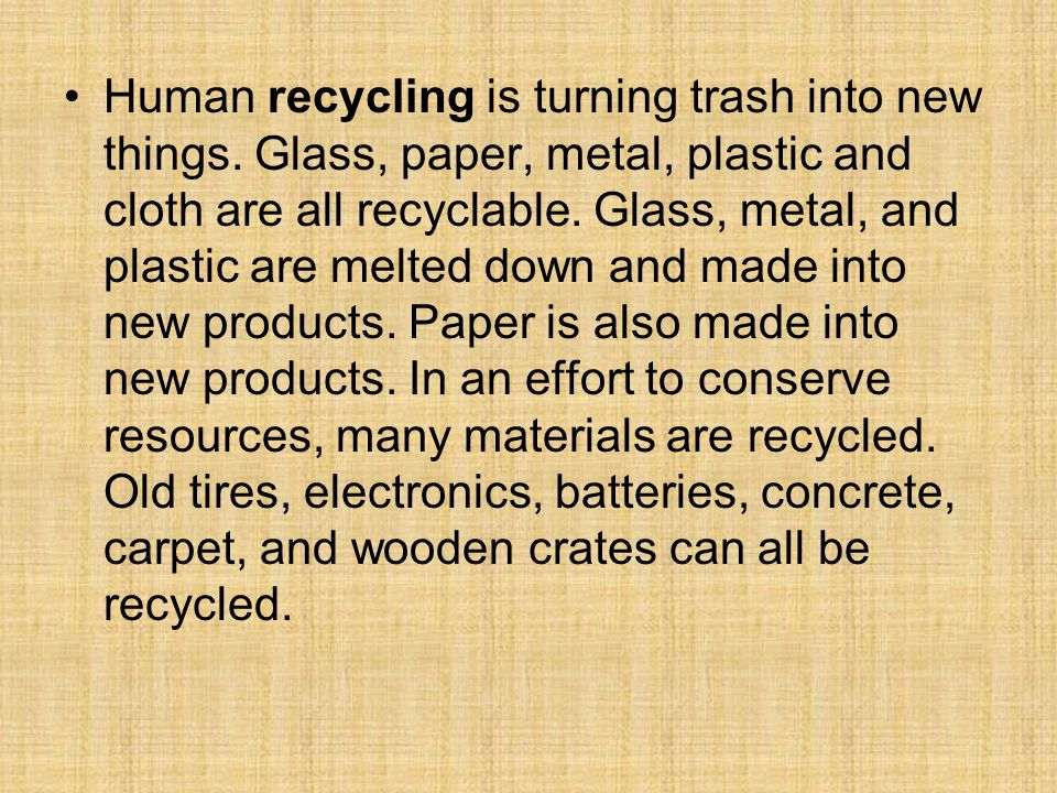 Human recycling is turning trash into new things