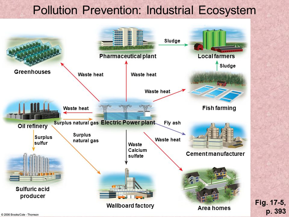 Pollution Prevention: Industrial Ecosystem
