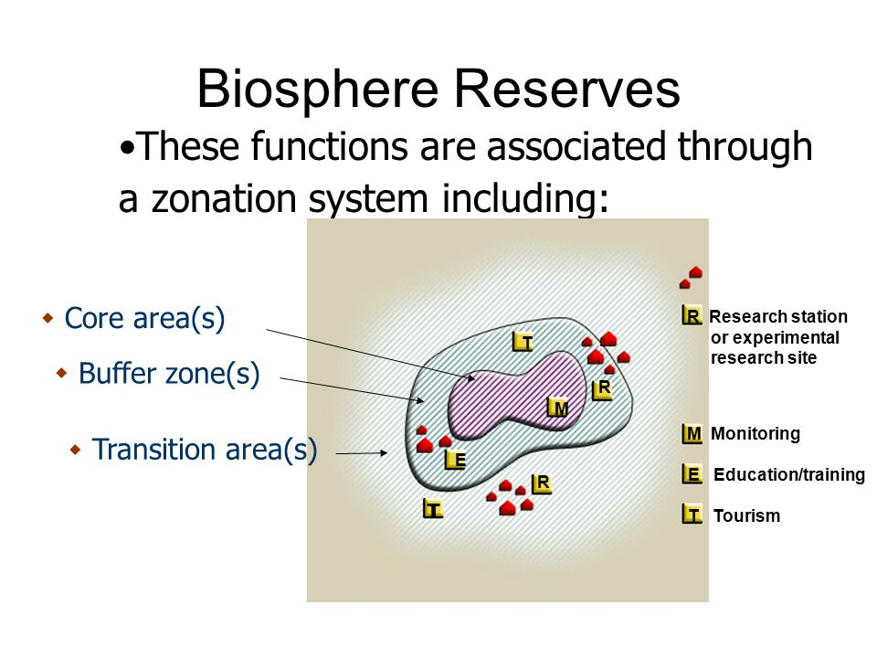 Biosphere Reserves These functions are associated through a zonation system including: Core area(s)