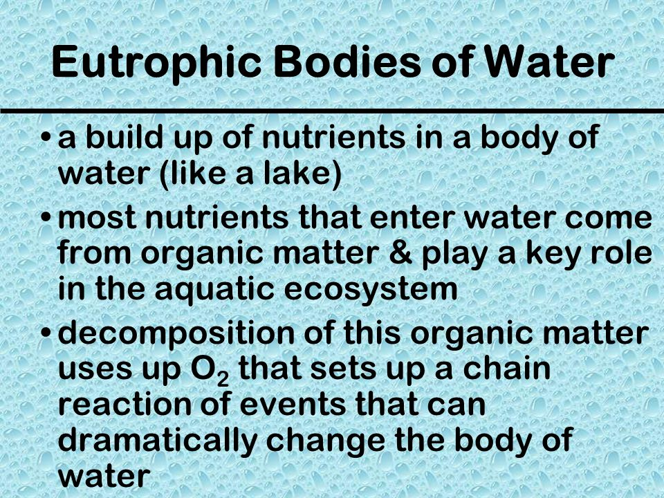 Eutrophic Bodies of Water