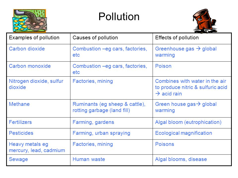 Pollution Examples of pollution Causes of pollution