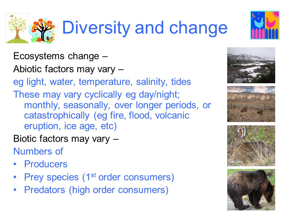 Diversity and change Ecosystems change – Abiotic factors may vary –