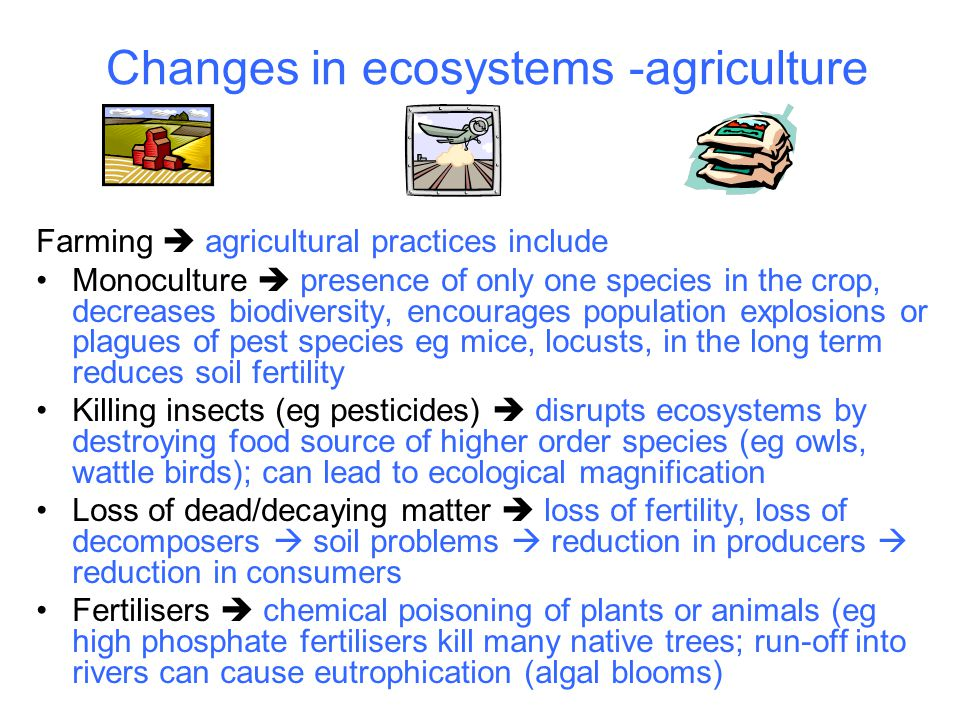 Changes in ecosystems -agriculture