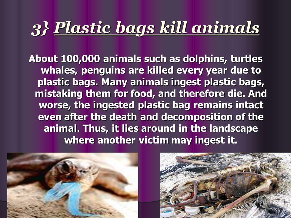 3} Plastic bags kill animals