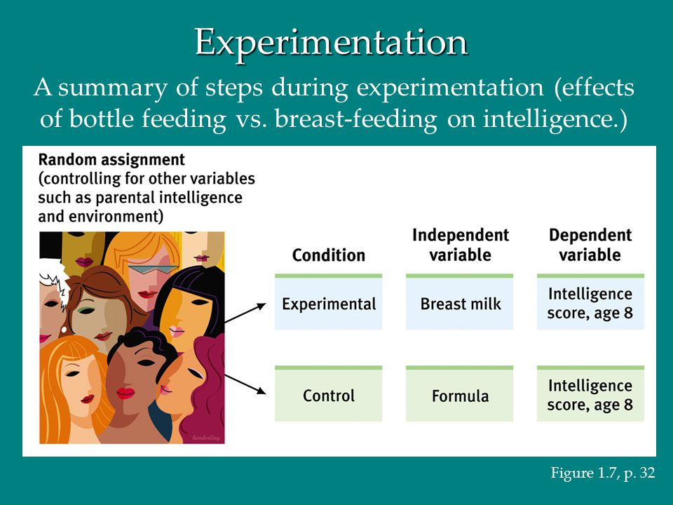 Experimentation A summary of steps during experimentation (effects of bottle feeding vs. breast-feeding on intelligence.)