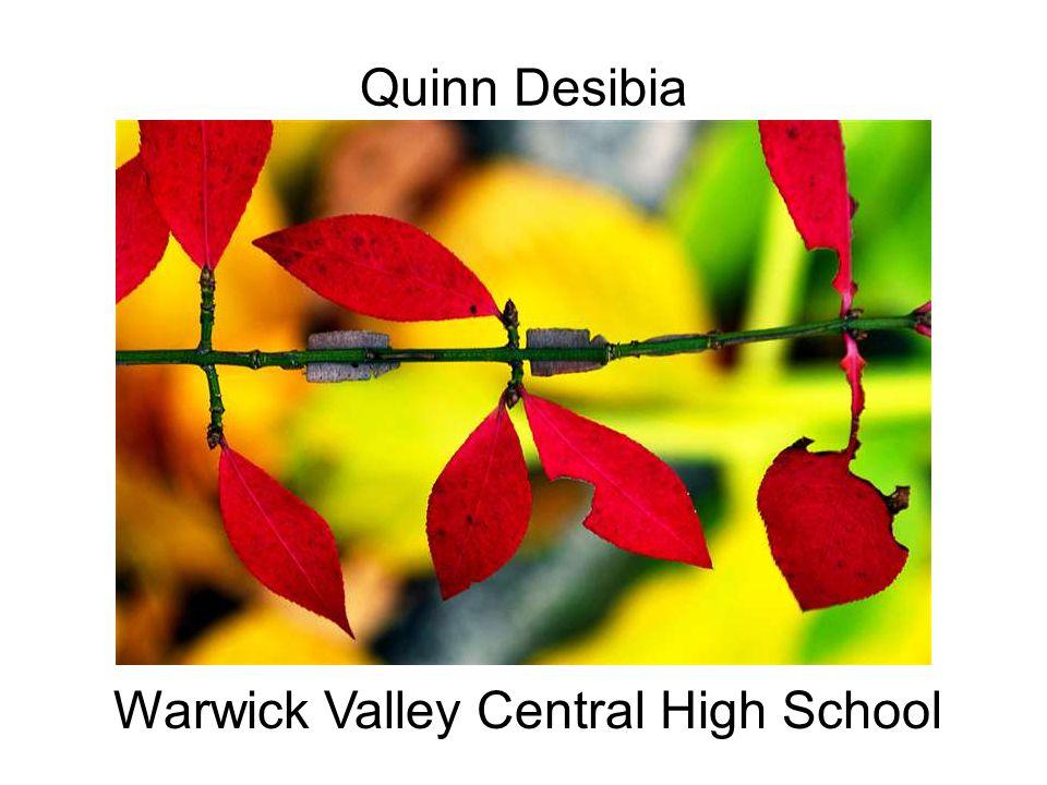 Warwick Valley Central High School