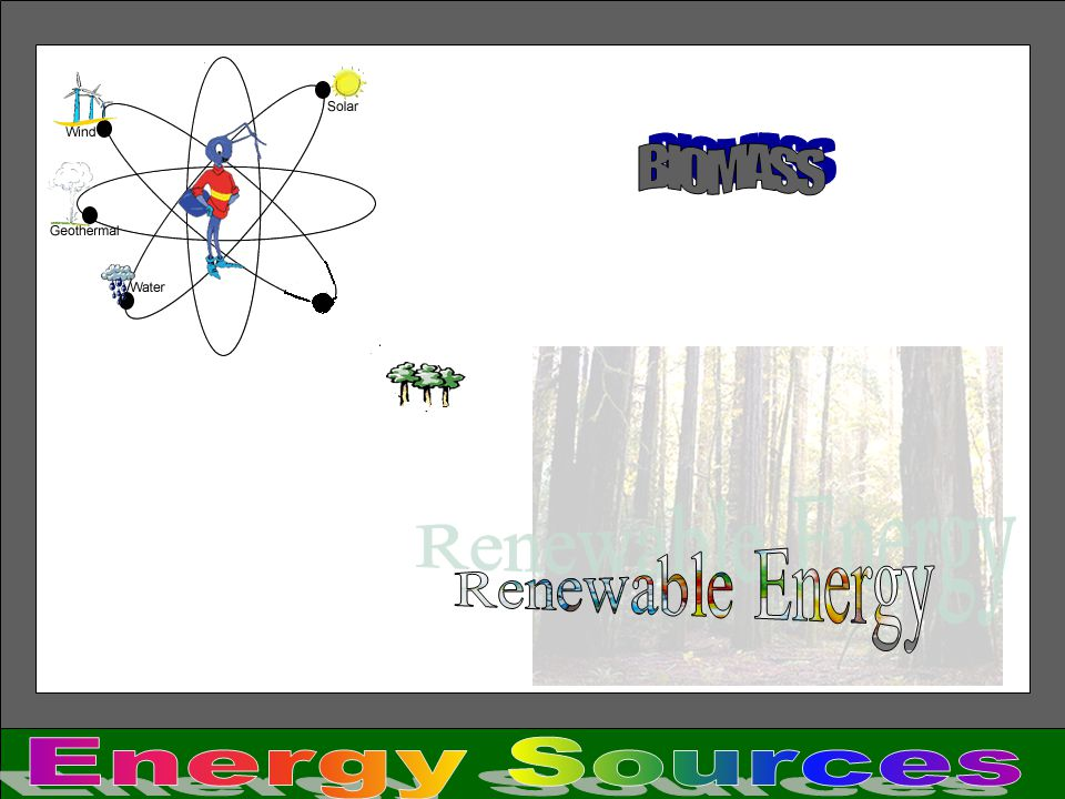 BIOMASS Renewable Energy Energy Sources