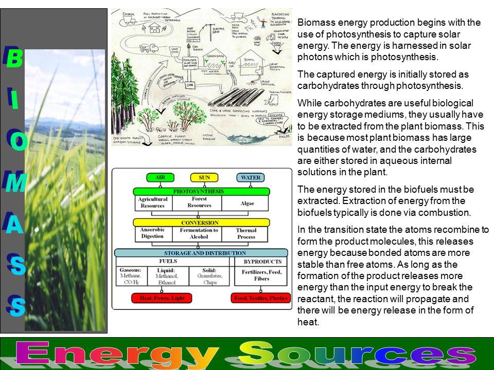 BIOMASS Energy Sources